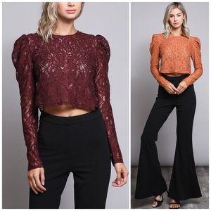 ❗️CLOSING SALE❗️Ox Blood Jacquard Lace Crop Top